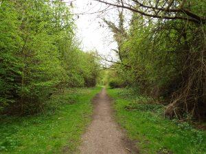 The Isle of Axholme Greenway - Haxey Line