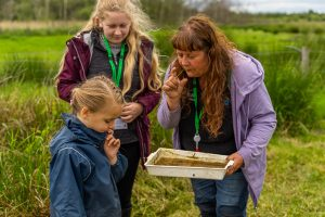 Pond dipping with school children - explaining pond life found