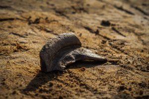 Low Burnham Dig - Find