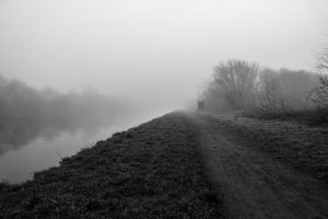 Misty morning across the canal